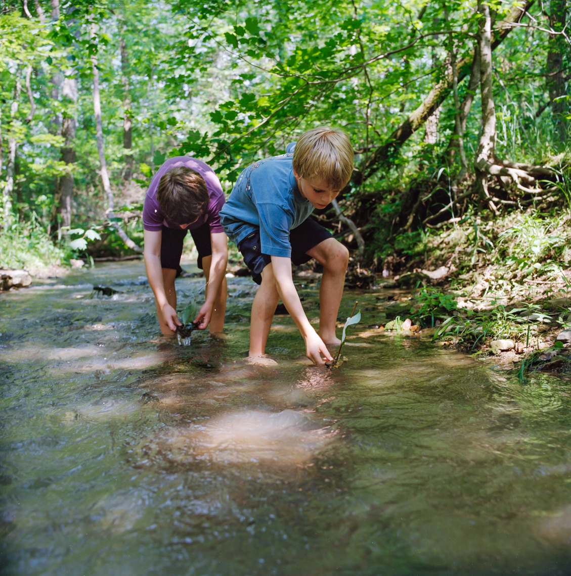 Boys exploring. Family, kids, outdoor, together, love, creek, river, woods, trees